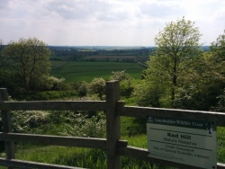Redhill reserve, Lincolnshire Wolds