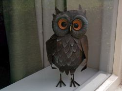 Watching out to welcome guests to Owl