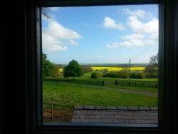 View from Owl Cottage master bedroom