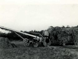 Threshing Rakings Rigsby