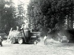Threshing Rakings Ulceby
