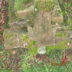 26. In memory of JENNIE BROWN aged 17 years died 26th November 1875 My beloved went into the garden to gather lilies