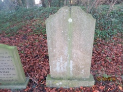 67. AGNES LOUISA HIGGINS born 25th March 1855 died 11th July 1940 wife of Frederick Higgins of Alford