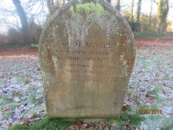 73. JOHN MOSES husband of MINNIE PARROTT died suddenly 25th July 1917 aged 31