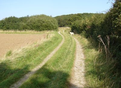 The bridle way from Rigsby to the village of Ailby