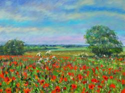 Peter-Wood-paint-poppies2