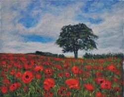 Peter-Wood-paint-poppies3